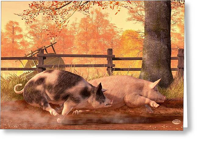 Barbeque Greeting Cards - Pig Race Greeting Card by Daniel Eskridge