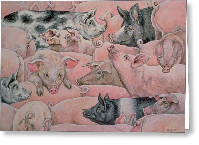 Tails Paintings Greeting Cards - Pig Spread Greeting Card by Ditz