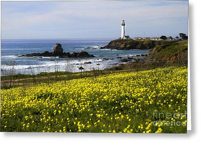 Beautiful Scenery Greeting Cards - Pigeon Point Lighthouse Greeting Card by Jennifer Ramirez