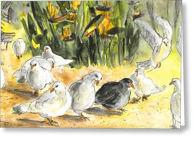 Pigeons In Benidorm Greeting Card by Miki De Goodaboom