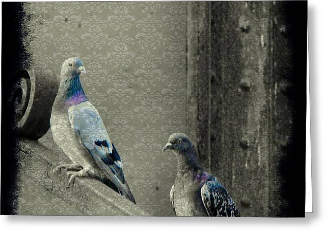 Feral Pigeon Greeting Cards - Pigeons In Damask Greeting Card by Gothicolors Donna Snyder