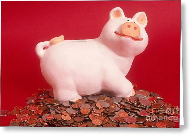 Life Change Greeting Cards - Piggy Bank On Coins Greeting Card by Catherine Ursillo