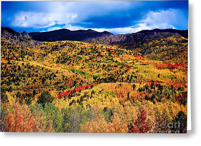 Jon Burch Photography Greeting Cards - Pikes Peak Autumn Greeting Card by Jon Burch Photography