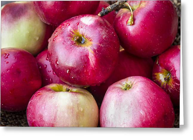 Jean Noren Greeting Cards - Pile of Apples Greeting Card by Jean Noren