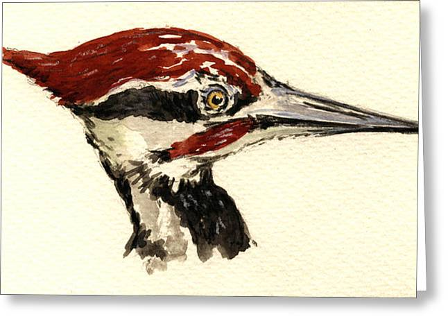 Pileated Woodpeckers Greeting Cards - Pileated woodpecker head study Greeting Card by Juan  Bosco