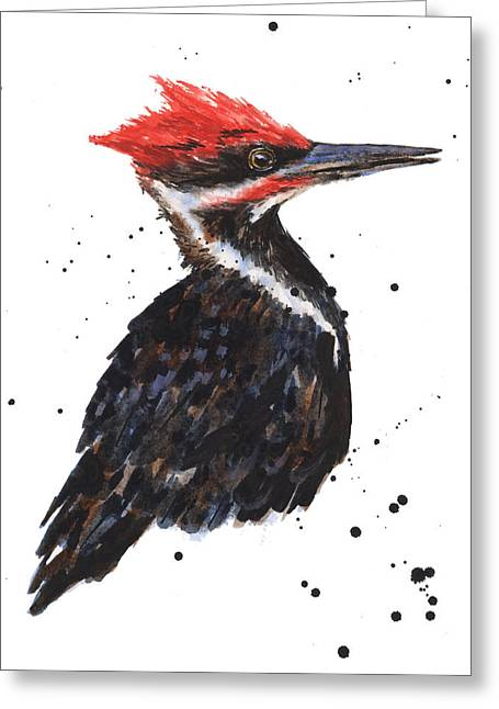 Pileated Greeting Cards - Pileated Woodpecker Watercolor Greeting Card by Alison Fennell