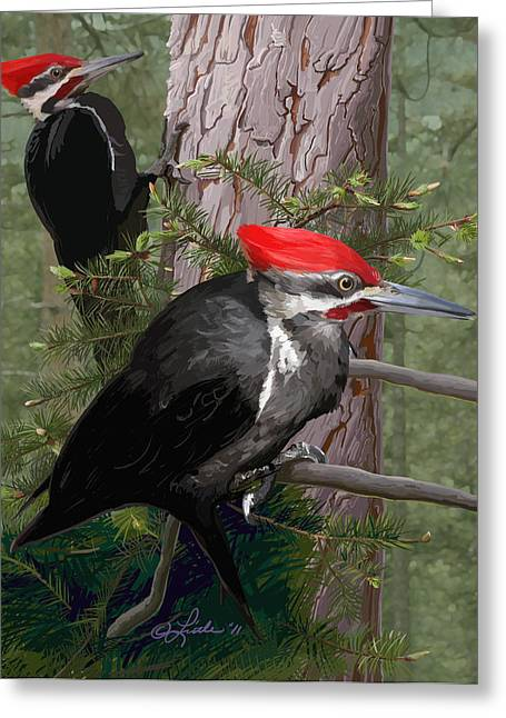 Pileated Woodpecker Greeting Cards - Pileated Woodpeckers Greeting Card by Pam Little