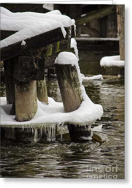 Winter Storm Nemo Greeting Cards - Pilings After Nemo Greeting Card by Deborah Smolinske