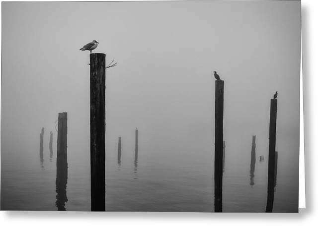 Mood Art Print Greeting Cards - Pilings in the Fog Greeting Card by Kyle Wasielewski