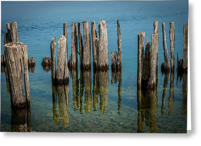 Lakescape Greeting Cards - Pilings Greeting Card by Paul Freidlund