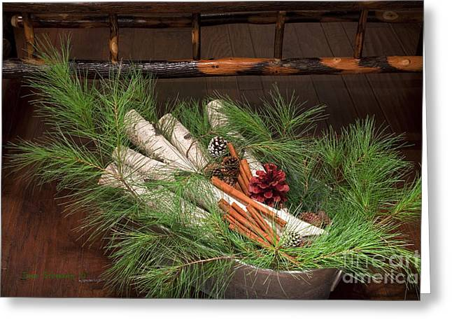 Pine Cones Greeting Cards - Pine And Birch Greeting Card by John Stephens