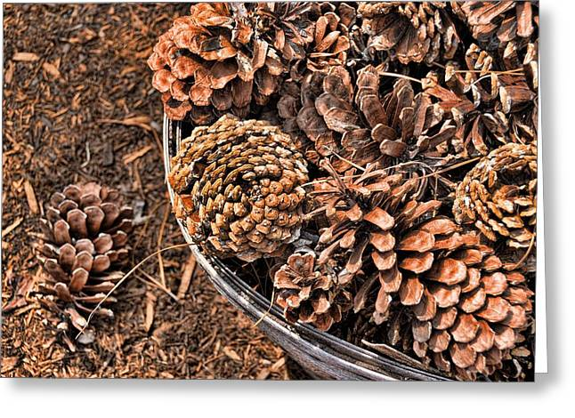 Sand Castles Greeting Cards - Pine Cone Greeting Card by JAMART Photography