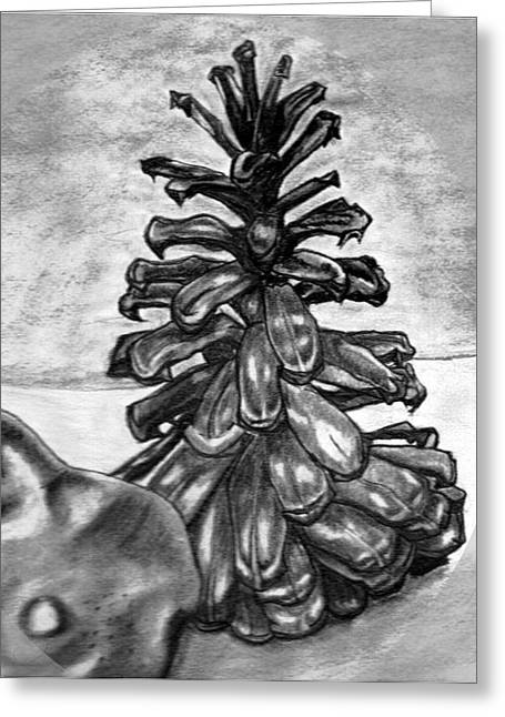 Pine Cone Greeting Card by Kaye Gribble