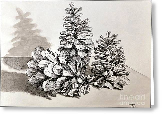 Pine Cone Trio Greeting Card by Art By - Ti   Tolpo Bader