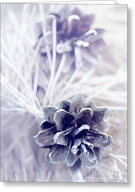 Bathroom Prints Greeting Cards - Pine Cones - Dreamy Greeting Card by Natalie Kinnear