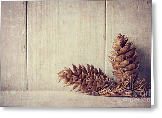 Cards Vintage Pyrography Greeting Cards - Pine cones Greeting Card by Jelena Jovanovic