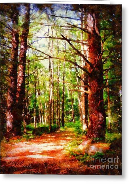 Sienna Greeting Cards - Pine Forest Path Greeting Card by Janine Riley