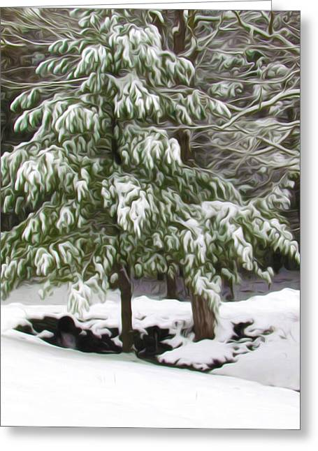 Twiggy Greeting Cards - Pine tree covered with snow 2 Greeting Card by Lanjee Chee