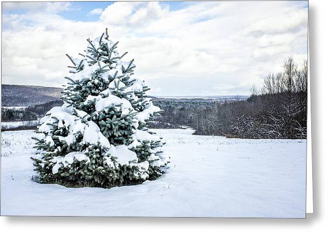 Snow-covered Landscape Greeting Cards - Pine tree under snow Greeting Card by Chris Bordeleau