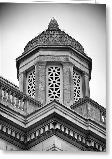 Pineapple Photographs Greeting Cards - Pineapple Dome BW Greeting Card by Christi Kraft