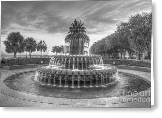 Tonemapping Greeting Cards - Pineapple Fountain in Black and White Greeting Card by Dale Powell