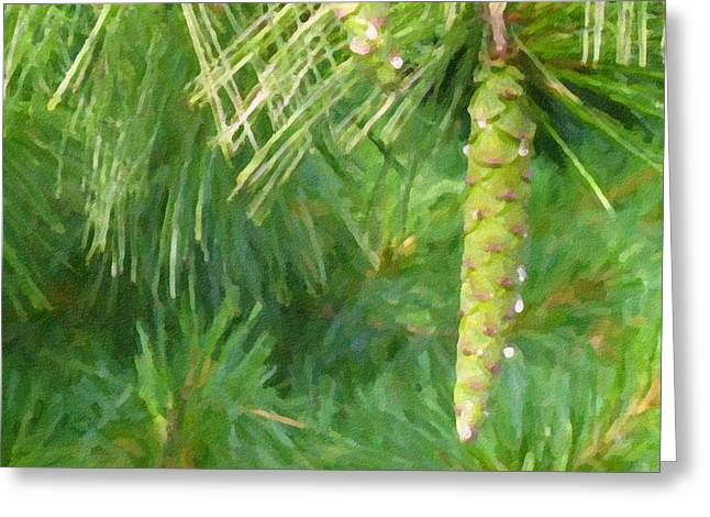 Pine Needles Greeting Cards - Pinecone - Digital Painting Effect Greeting Card by Rhonda Barrett