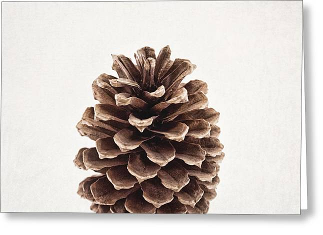 Pinecone Pose 2 Greeting Card by Alison Sherrow