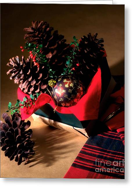 Commercial Photography Greeting Cards - Pinecones Christmasbox Greeting Card by Iris Richardson