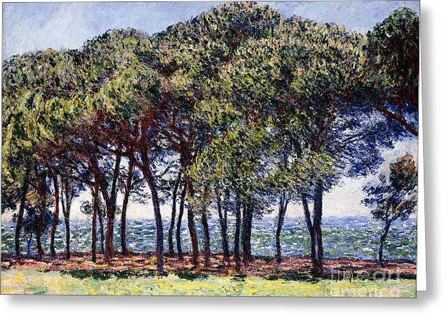 Blue Green Water Greeting Cards - Pines Greeting Card by Claude Monet