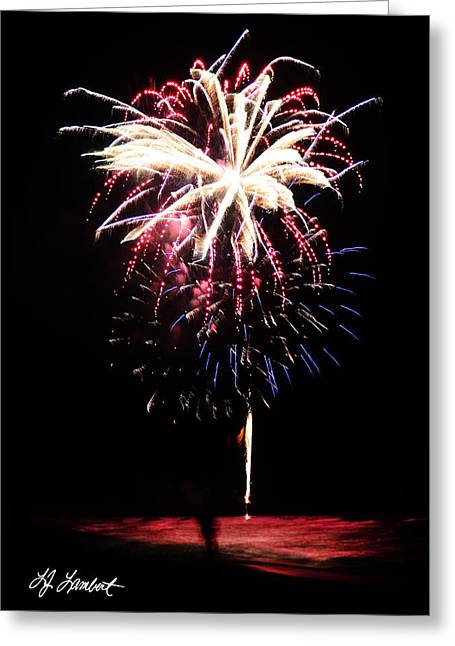 4th July Photographs Greeting Cards - Pink and Blue Fireworks Greeting Card by Lj Lambert