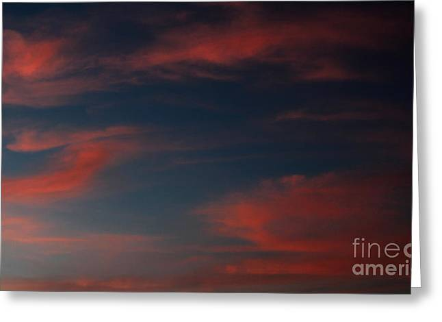 Amanda Collins Greeting Cards - Pink and Blue Skys Greeting Card by Amanda Collins
