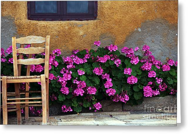 Pink Flower Prints Greeting Cards - Pink and Orange in Delos Greeting Card by John Rizzuto