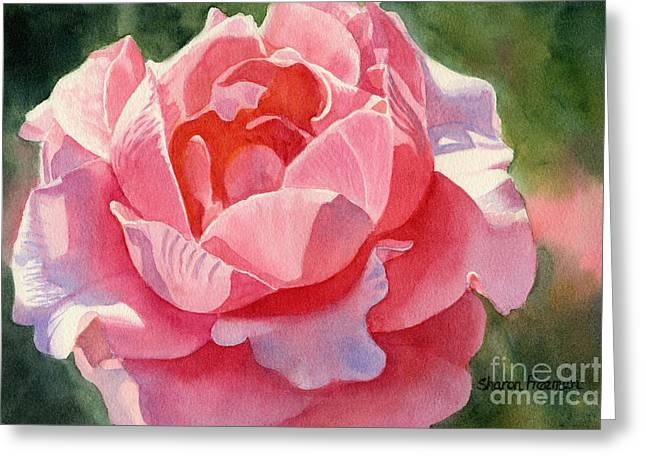 Salmon Paintings Greeting Cards - Pink and Orange Rose Blossom Greeting Card by Sharon Freeman