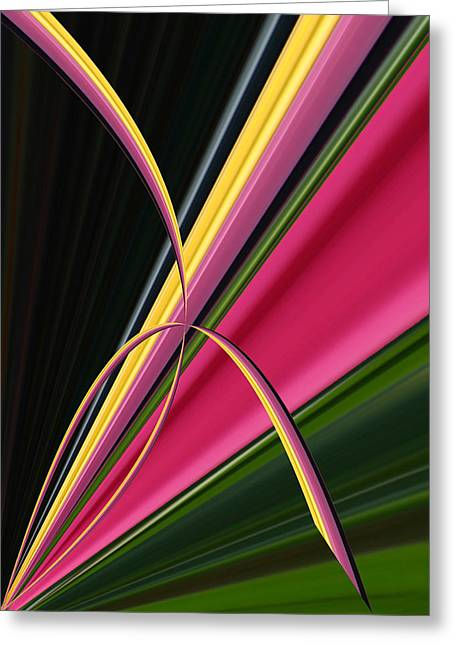 Modern Photographs Greeting Cards - Pink and Yellow Tulips Greeting Card by Jim Baker