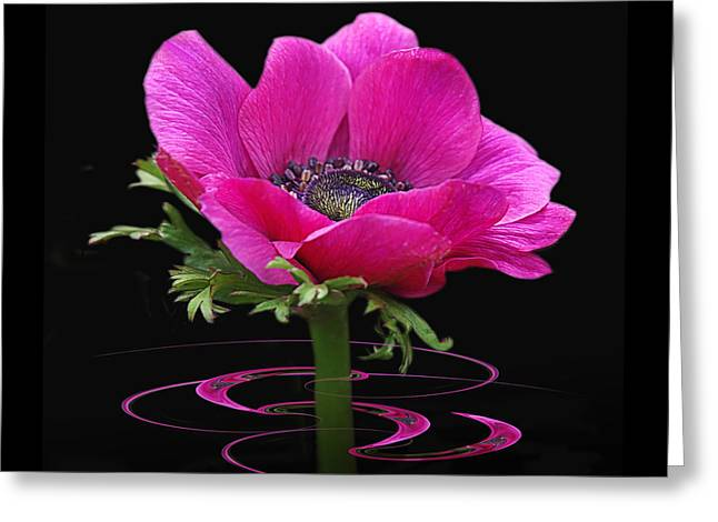 Garden Petal Image Greeting Cards - Pink Anemone Whirl Greeting Card by Gill Billington