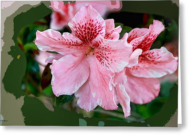 Azalias Greeting Cards - Pink Azalia Greeting Card by Bonnie Willis