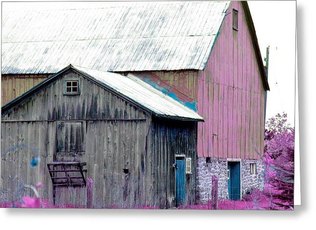 Barn Yard Greeting Cards - Pink Barn Print Greeting Card by Laura  Carter
