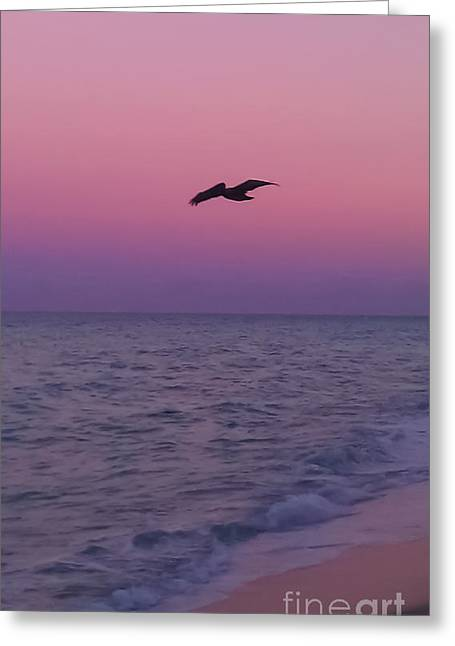 Pink Beach Sunset Greeting Card by Charlie Cliques