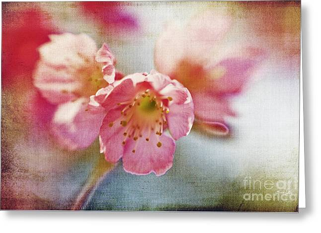 Pink Blossom Greeting Card by Scott Pellegrin