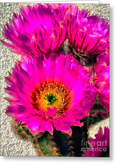 Ink Drawing Greeting Cards - Pink cactus flower Greeting Card by Odon Czintos