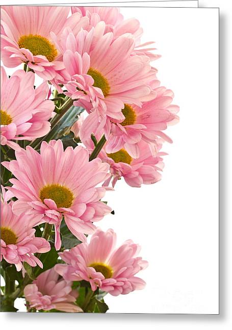Foam Pyrography Greeting Cards - Pink Chrysanthemum Flower Greeting Card by Boon Mee