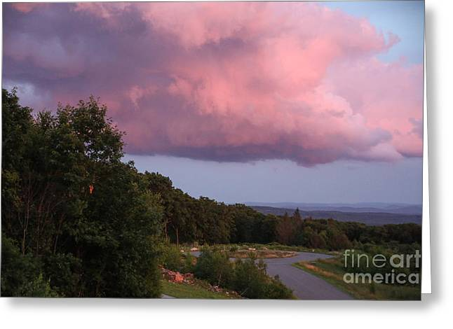 Randi Shenkman Greeting Cards - Pink Cloud Greeting Card by Randi Shenkman
