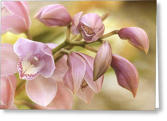 Long-lasting Greeting Cards - Pink Cymbidium Orchids Greeting Card by Julie Palencia