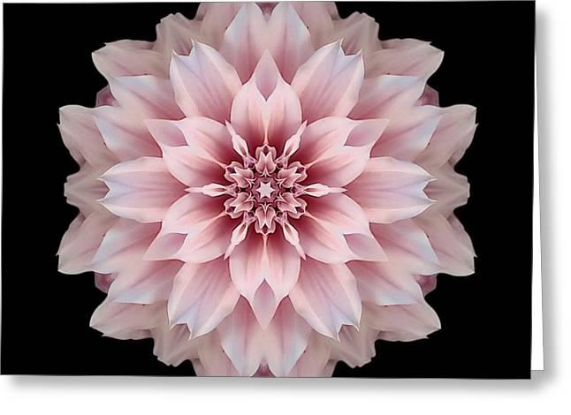 David J Bookbinder Greeting Cards - Pink Dahlia Flower Mandala Greeting Card by David J Bookbinder