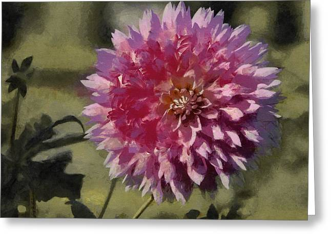 Best Sellers -  - Botanical Greeting Cards - Pink Dahlia Greeting Card by Jeff Kolker