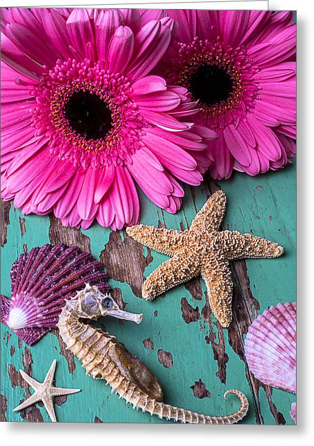 Shell Texture Greeting Cards - Pink Daises and Seahorse Greeting Card by Garry Gay