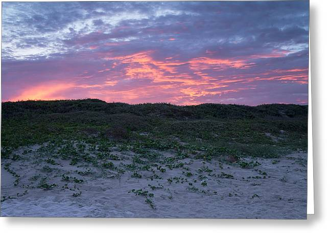 Pink Sky Greeting Cards - Pink evening sky over the seashore Greeting Card by Ellie Teramoto