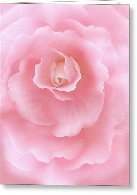 Begonia Garden Greeting Cards - Pink Fantasy Begonia Flower Greeting Card by Jennie Marie Schell