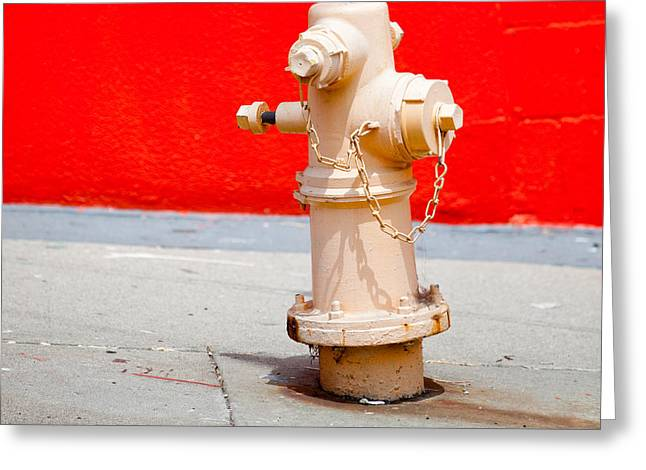 Public Water Supply Greeting Cards - Pink Fire Hydrant Greeting Card by Art Block Collections