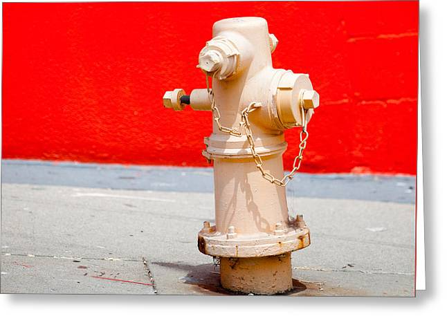 Pink Fire Hydrant Greeting Card by Art Block Collections